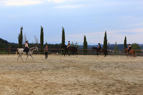 diacceroni-passeggiate-a-cavallo-lezioni-nell-arena-1