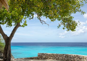 Grote Knip - Curacao