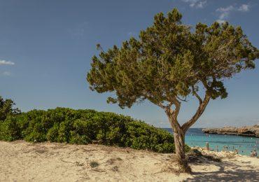 Cala En Bosch - Menorca - Spanje