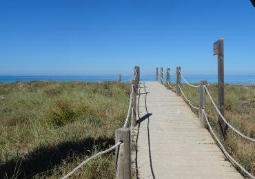Menorca - strand Son Bou
